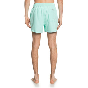 Quiksilver Everyday Volley 15 Shorts Men beach glass